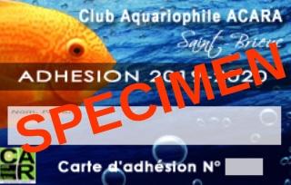 carte adhésion ACARA 2019-2020